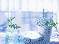 Interior Greenery & Herbs (Vol.02)51 pics