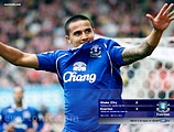 2008/09 Everton FC Wallpapers31 pics